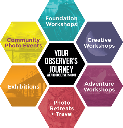 Your We Are Observers Journey diagram
