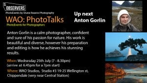 Anton Gorlin PhotoTalk